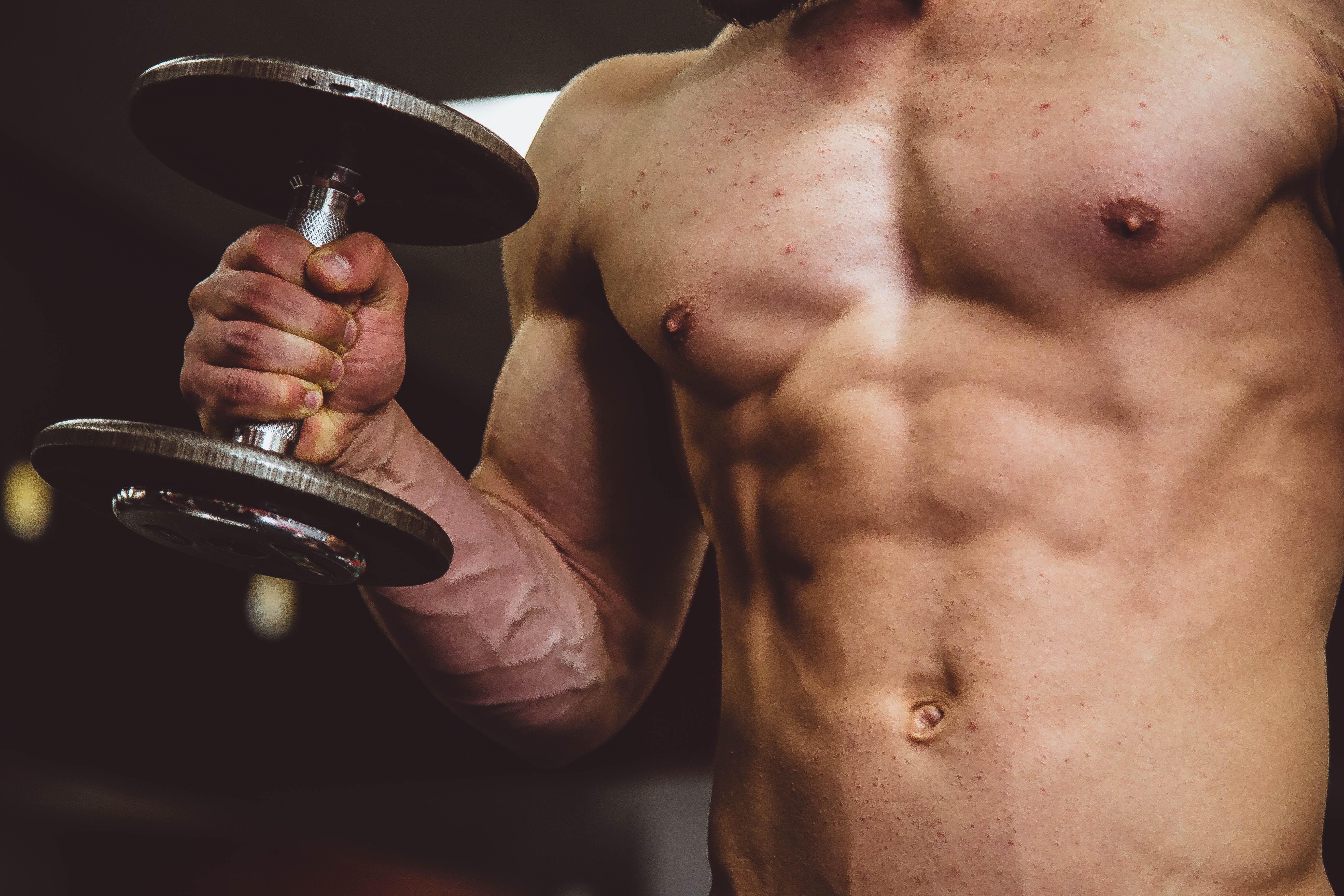 筋肉の収縮様式【3種類】 筋肉はどうやって働いているのか
