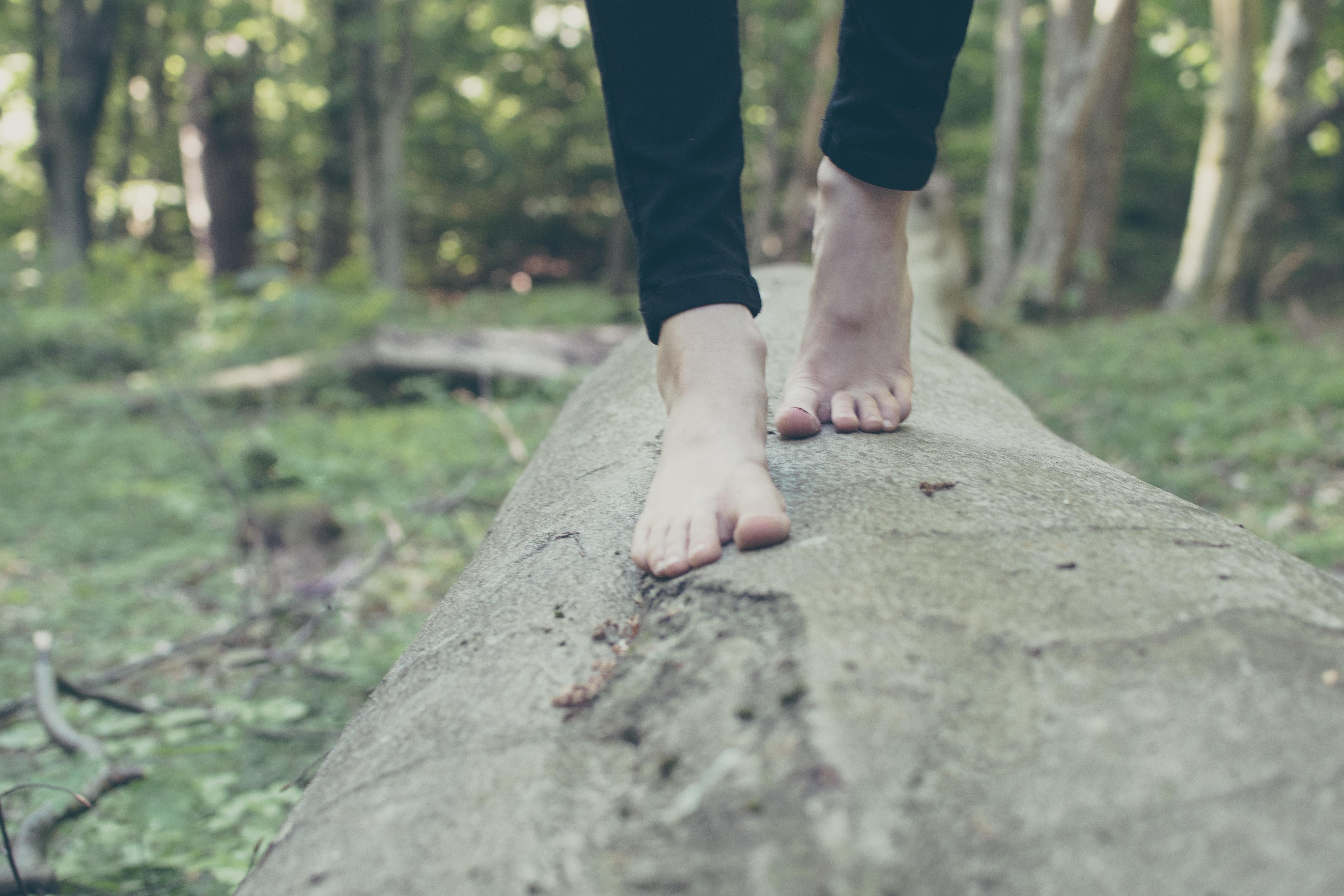 母趾内転筋の特徴と作用 【足の横アーチを作る筋肉】
