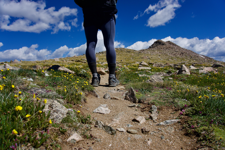【CW-X ジェネレーター】サポートタイツで関節の安定 登山で膝の痛みを感じなくなった